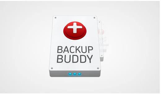 Backup Buddy